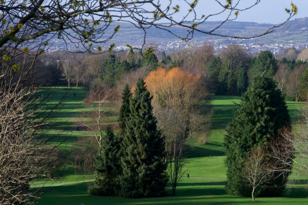 Fairway et arbres sur le parcours de Belvoir Park en Irlande du Nord