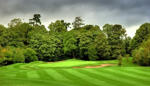 Large green sur le parcours de Mount Wolseley