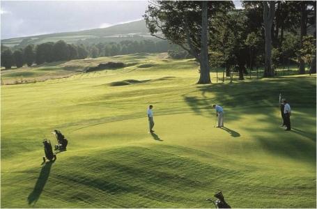 Golfeurs sur le green sur le parcours de Powerscourt East